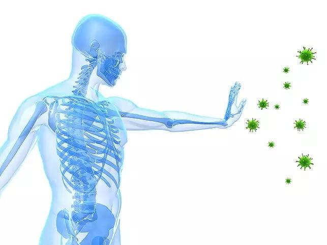 Sina Medical Immunity Webinar