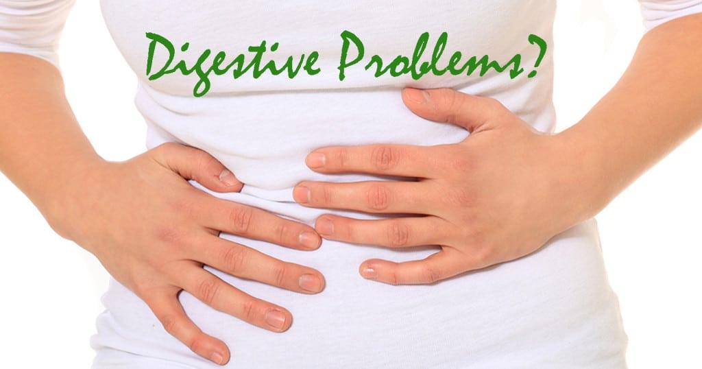 Sina & Sage Event -Digestive Problem